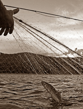 Новый закон о запрете вылова Байкальского омуля