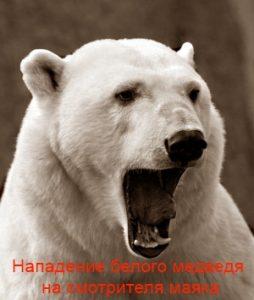 Нападение белого медведя на смотрителя маяка