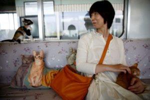 Кошачий поезд в Японии