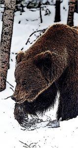 Весна, медведи просыпаются от спячки