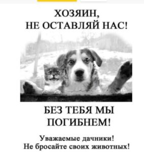 Призываем дачников не оставлять животных
